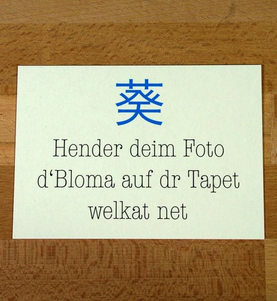 Postkarte -Haiku Hender deim Foto