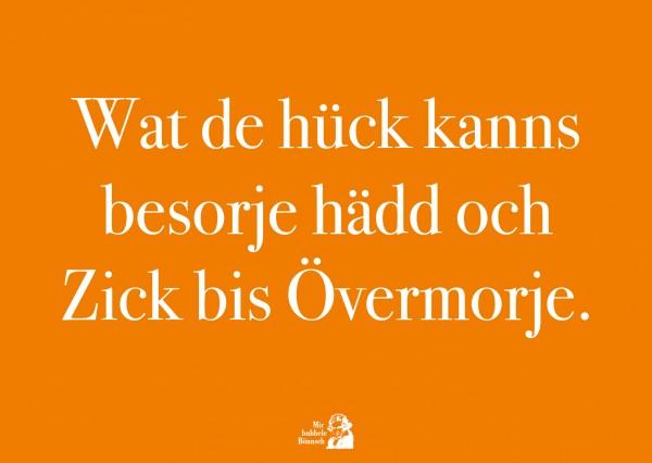 Postkarte - Wat de hück kanns besorje hädd och Zick bis Övermorje.