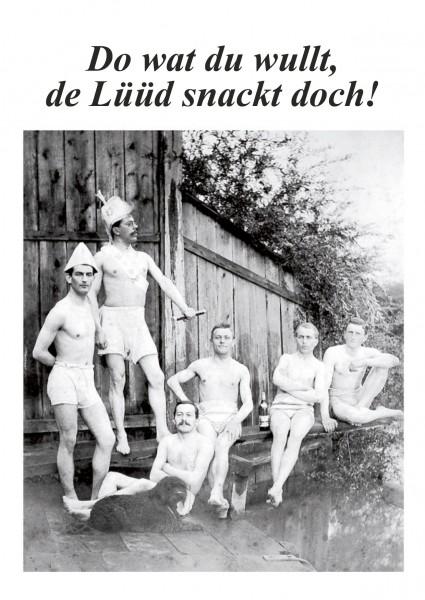 Postkarte - Düdenbüttel - Do wat du wullt, de Lüüd snackt doch!